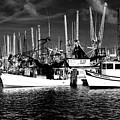 Boats by Alicia Morales
