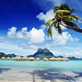 Bora Bora, Lagoon Resort Print by Himani - Printscapes
