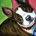 Boston Terrier Looking Up by Dottie Dracos