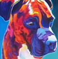 Boxer - Jax by Alicia VanNoy Call