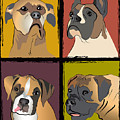 Boxer Dog Portraits by Robyn Saunders