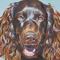 Boykin Spaniel by Lee Ann Shepard