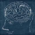 Brain Drawing On Chalkboard by Setsiri Silapasuwanchai
