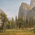 Bridal Veil Falls Yosemite Valley California by Albert Bierstadt