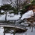 Bridge At Botanical Garden by David Bearden