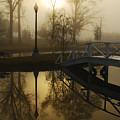 Bridge Over Still Waters by Wayne Archer