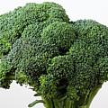Broccoli by Robert Ullmann
