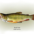 Brook Trout by Ralph Martens