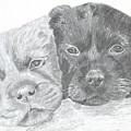 Brothers by DebiJeen Pencils