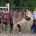 Buckaroo Cowgirl by Cindy Singleton