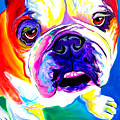 Bulldog - Stanley by Alicia VanNoy Call