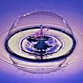 Bursting My Bubble by Susan Candelario