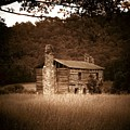 Cabin Thru The Trees by Joyce Kimble Smith