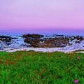 California Coast by Jen White
