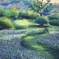 California Spring by Karin  Leonard