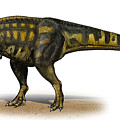 Carcharodontosaurus Iguidensis by Sergey Krasovskiy