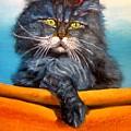 Cat.go To Swim.original Oil Painting by Natalja Picugina