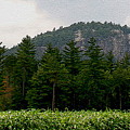 Cathedral Ledge North Conway Nh by Paul Gaj