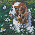 Cavalier King Charles Spaniel With Butterfly by Lee Ann Shepard
