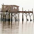 Cedar Key Structure by Patrick M Lynch