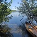 Cedar Strip Canoe And Cedars At Hanson Lake by Larry Ricker