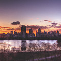 Central Park Rises by Ariane Moshayedi