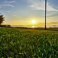 Charleston Waterfront Park Sunrise 3 by Dustin K Ryan