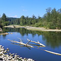 Chehalis River Washington by Laurie Kidd