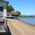 China Camp In Marin Ca by Wingsdomain Art and Photography