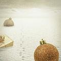 Christmas Journey by Wim Lanclus