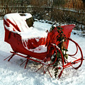 Christmas Sleigh Print by Andrew Fare