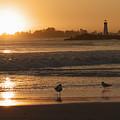 Classic Santa Cruz Sunset by Paul Topp