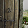 Close View Of A Wooden Door On A Villa by Todd Gipstein