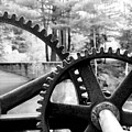 Cogs by Greg Fortier