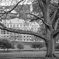 Colgate University Landscape by University Icons