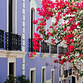 Colorful Balconies Of Old San Juan Puerto Rico by George Oze