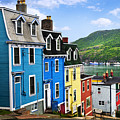 Colorful Houses In St. John's by Elena Elisseeva