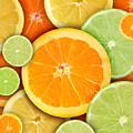 Colorful Round Citrius Fruit Background by Angela Waye