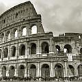 Colosseum  Rome Poster by Joana Kruse
