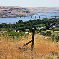 Columbia River - Biggs And Maryhill State Park by Carol Groenen