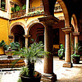 Columns And Courtyard by Mexicolors Art Photography
