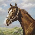 Commission Chestnut Horse by Dorothy Coatsworth