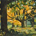 Concord Fall Trees by Claire Gagnon