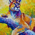 Cougar Portrait I by Marion Rose