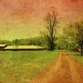 Country Living - Bayonet Farm by Angie Tirado