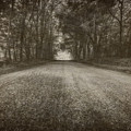 Country Road by Everet Regal