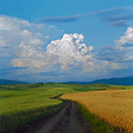 Country Road by Pavel  Filatov