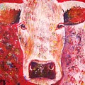 Cow by Anastasis  Anastasi