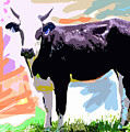 Cow Time by David Lloyd Glover