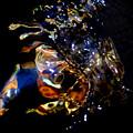 Crab Nebula by Terril Heilman